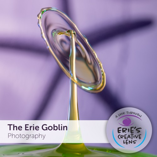 The Erie Goblin BLOG Main