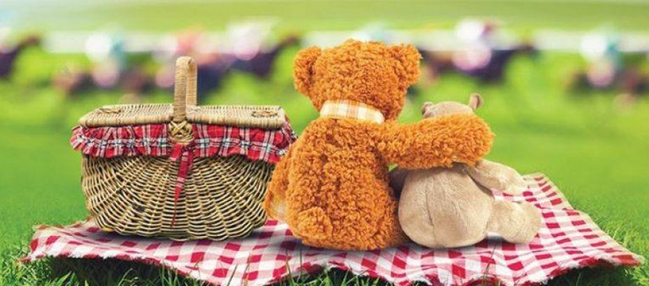 Teddy Bear Picnic v2